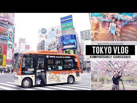 Tokyo Vlog: Shibuya, Harajuku, DisneySea, Skytree, Asakusa | Kim Mendoza