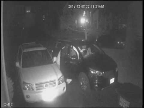 Vehicle Tampering