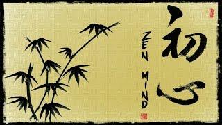 THE ZEN MIND Shunryu Suzuki Quotes .The beginner