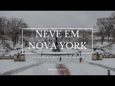 NEVE NO CENTRAL PARK E BATTERY PARK EM NOVA YORK NOS ESTADOS UNIDOS