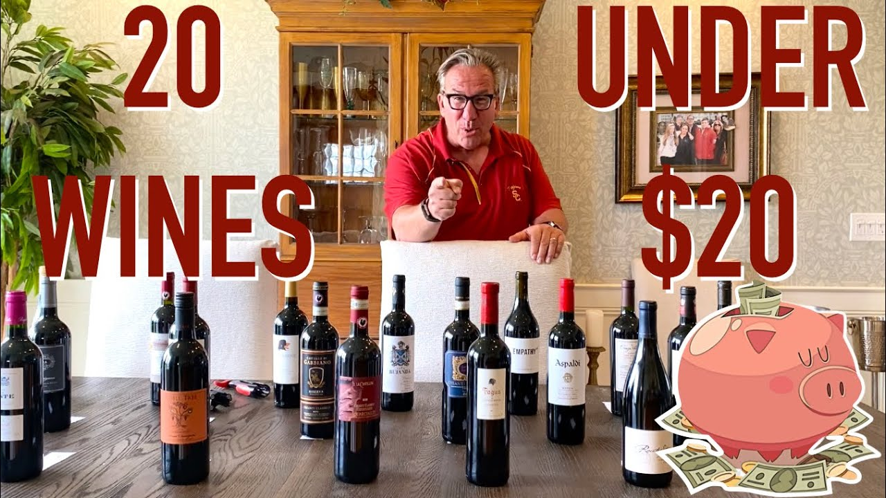 Affordable Wines || 20 Wines UNDER $20 || Decants With D