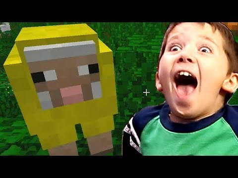 8 Year Old Jacob Playing Minecraft - How To Make Carpet & Change Carpet Color With Dye
