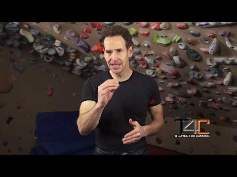 Forearm Antagonist Muscle Training for Climbers
