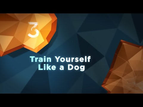 Brain Science for Self Improvement - Train Yourself Like a Dog