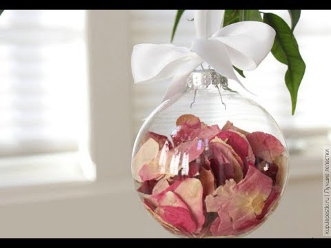 Right Way to Dry Rose Petals