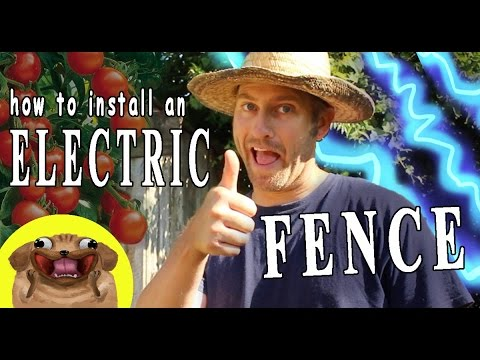 How to Install an Electric Fence