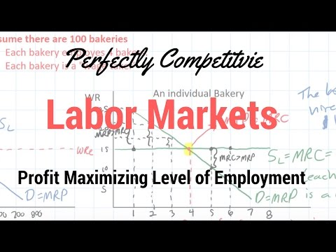Labor Markets - Changes in the Profit Maximizing Level of Employment