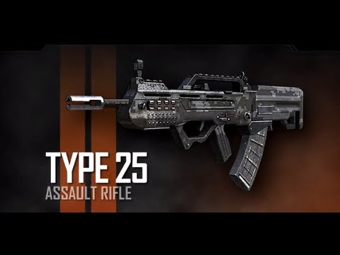 My Thoughts on the Type 25