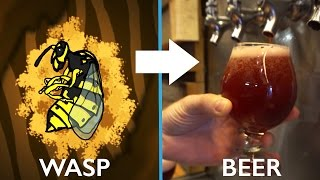 Beer Made With Wasp Guts!!