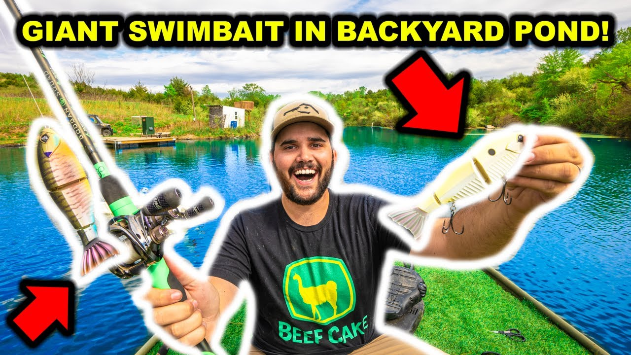 SIGHT-FISHING with GIANT SWIMBAITS in My BACKYARD POND!!!