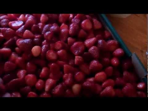 Storing Strawberries