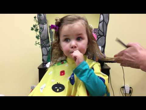 Sydney gets her first haircut!