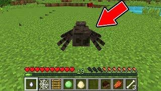 MINECRAFT AS A SPIDER