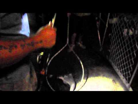 how to catch brisbane river bull sharks....B105