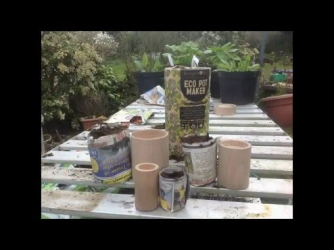 How to make a newspaper plant pot
