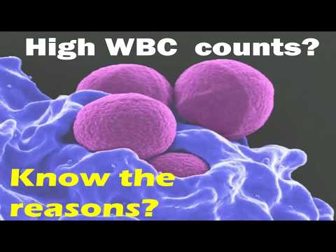 Some reasons for HIGH WBC COUNT