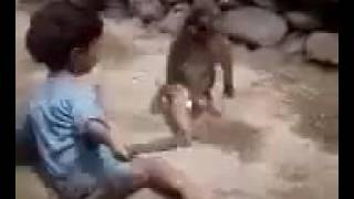 Đánh nhau như phim ( khỉ và em bé )
