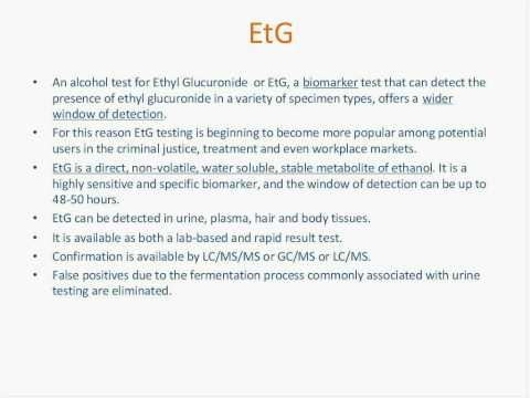 Premier Biotech Hosts EtG Testing An Exciting Alternative to Traditional Alcohol Testing Methods 12