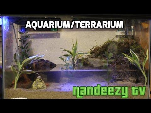 Aquarium/Terrarium 5 gallon set up
