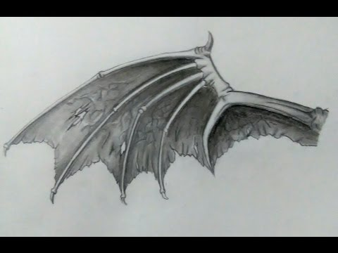 How To Draw demon Wing | Speed Drawing demon Wing