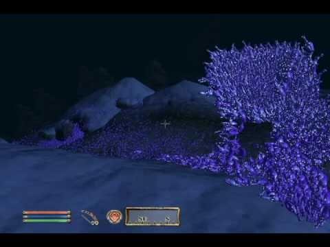 TES4 Oblivion Potion River (Failed)
