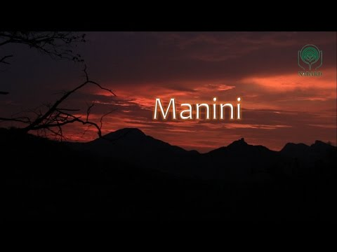 Manini – The Modern Rural Workplace