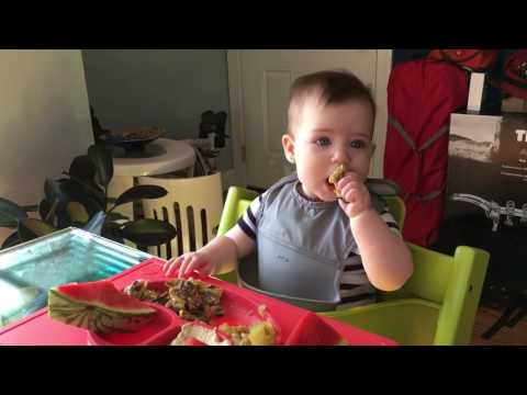 Baby led weaning - 8 Month old eating egg with mushrooms