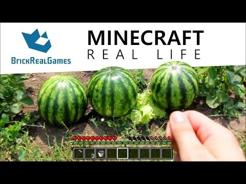 Minecraft Real Life - How to Make Melon Farm - BrickRealGames