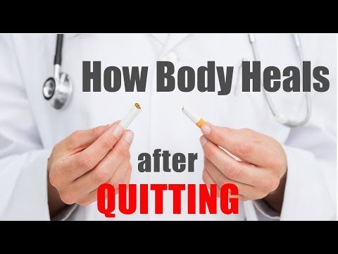 How Body Heals after Quitting (ENG) It's time to Stop Smoking Tobacco | Simplified by Dr.Education