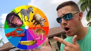 Monster ANIMAL Wheel What you pick is what you BUY!! **Expensive**