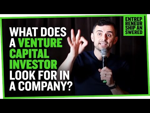 What Does a Venture Capital Investor Look for in a Company?