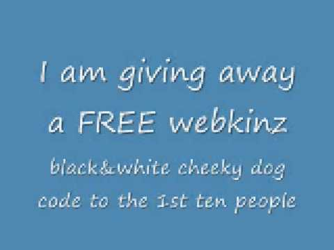 TRADE OFFER-A BLACK AND WHITE CHEEKY DOG CODE FOR A WEBKINZ ACCOUNT RARE OR NON RARE