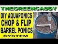 AQUAPONIC CHOP & FLIP 55 GALLON BARREL - DIY AQUAPONICS SYSTEM W/ BELL SIPHON BACKYARD BARRELPONICS