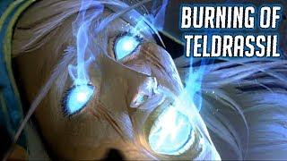 WOW BFA: The Burning of Teldrassil (Alliance) - Tyrande Saves Malfurion