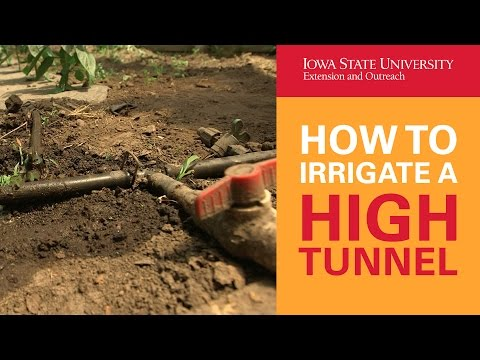 How to Irrigate a High Tunnel