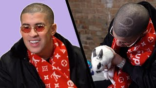 Bad Bunny Gets Surprised With Bunnies (While Answering Fan Questions)