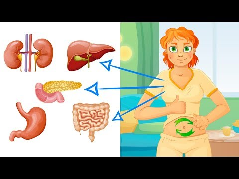 This is How to Detox Each Organ to Never Feel Sick or Tired Again!
