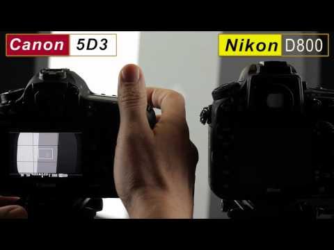Nikon D800 Greenish LCD Tint Due to White Balance Issue?