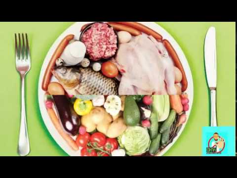 Animal v/s plant protein | which is more necessary | HINDI |