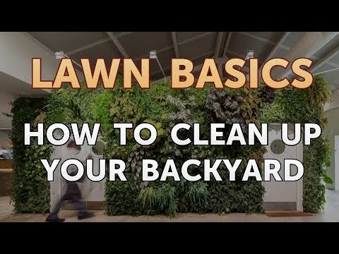 How to Clean Up Your Backyard