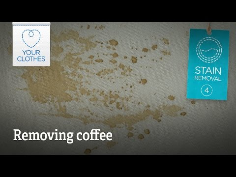 Stain removal: how to remove coffee stains from clothes