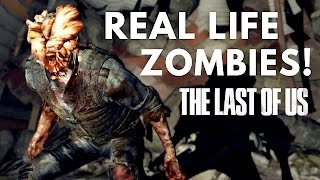 Could You Become A Zombie?   Science Of The Last Of Us