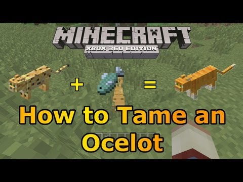 Minecraft Xbox 360: How to Tame an Ocelot! | TU12 is Out!