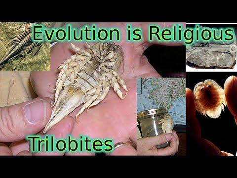Evolutionary Religion: Trilobites Alive - Creation Liberty Evangelism