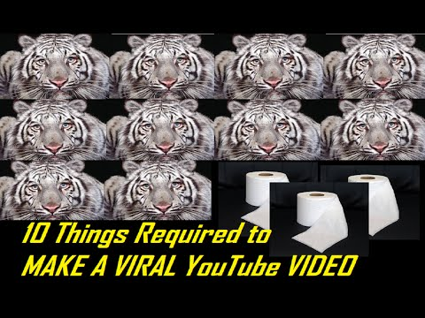 Video production Tips How to Make a Viral Video, YouTube Video Help