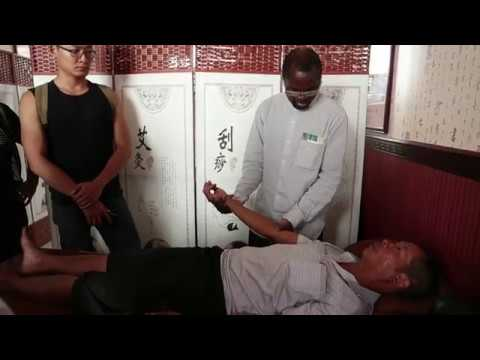Chinese Dream, My Dream: Traditional Chinese medicine unites two continents