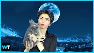 Why Did Shooter Nasim Aghdam Have A Vendetta Against YouTube? | What