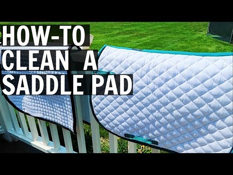 HOW TO CLEAN YOUR SADDLE PAD