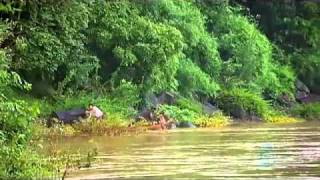 ABC.The.Amazon.of.Asia.the mekong river in laos