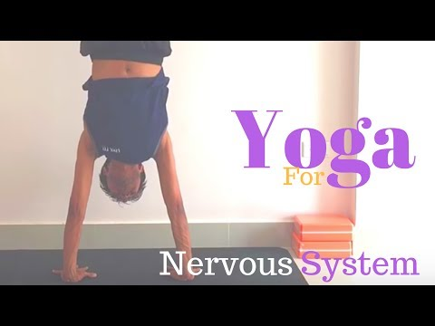 Yoga for Nervous System - Yoga with Amit